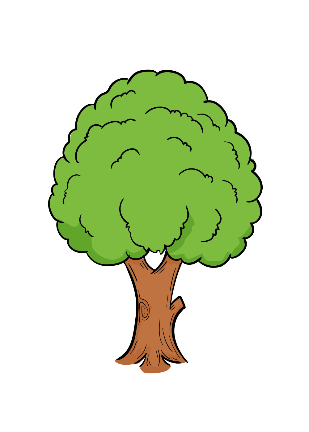 vẽ cây bước 7