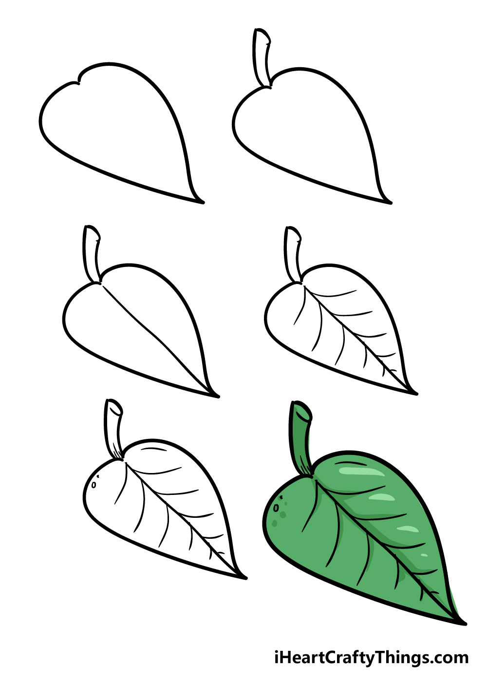 how to draw leaf in 6 steps