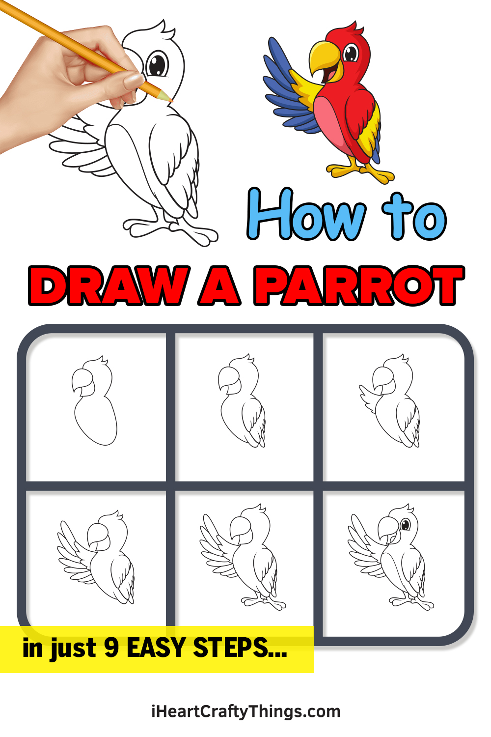 how to draw a parrot in 9 easy steps