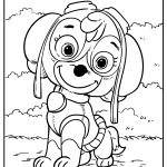 paw patrol coloring pages free images