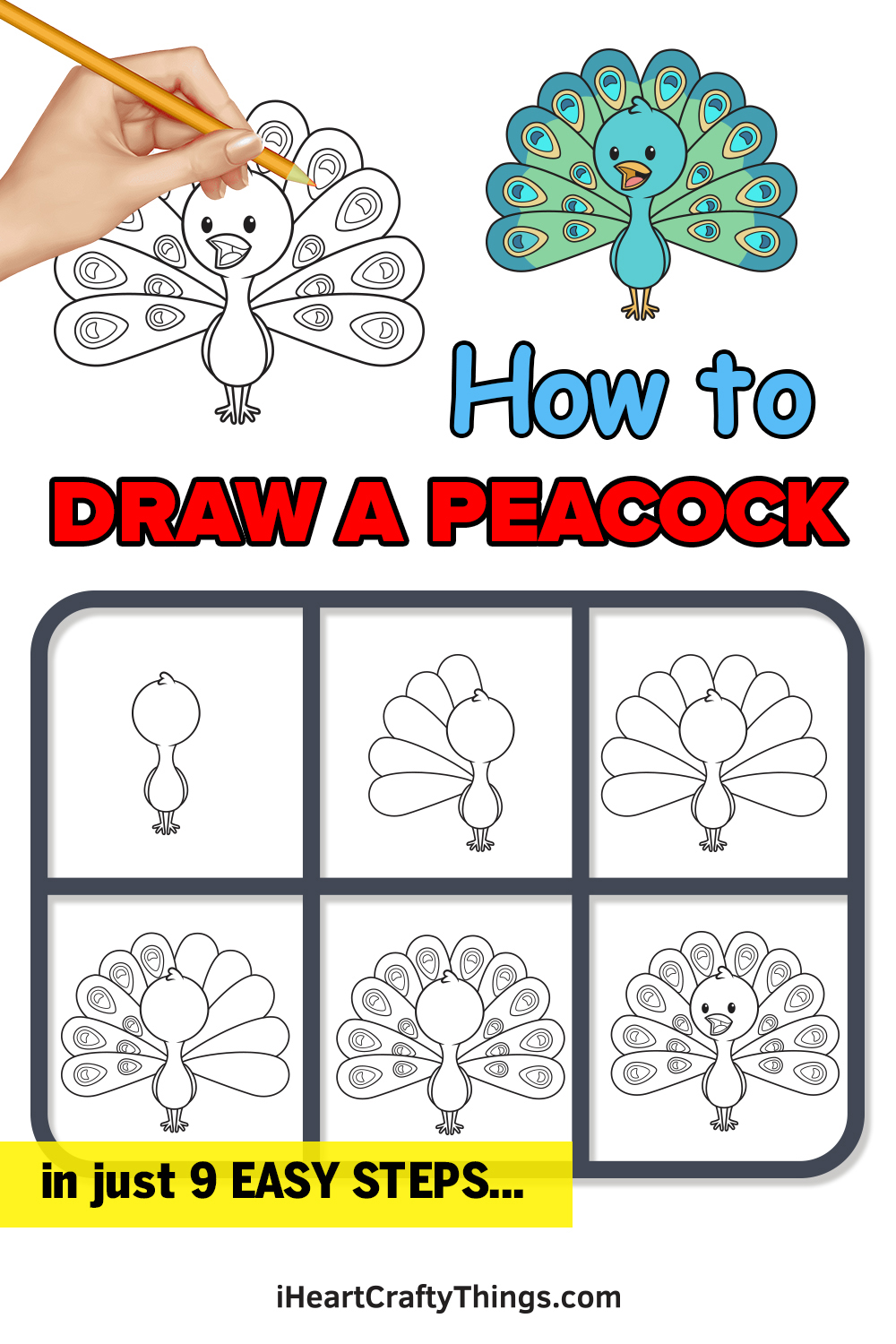 how to draw a peacock in 9 easy steps