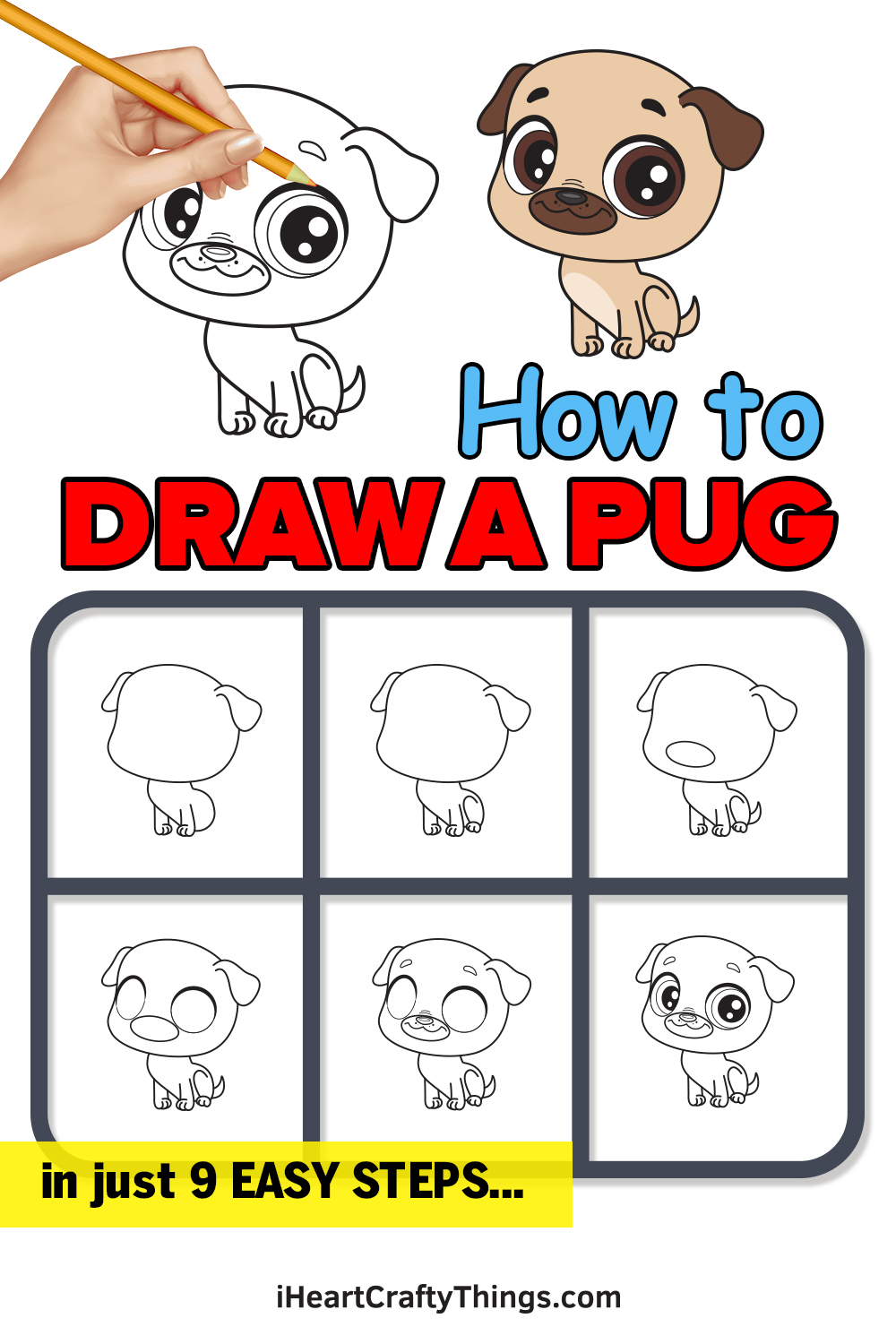 how to draw a pug in 9 easy steps