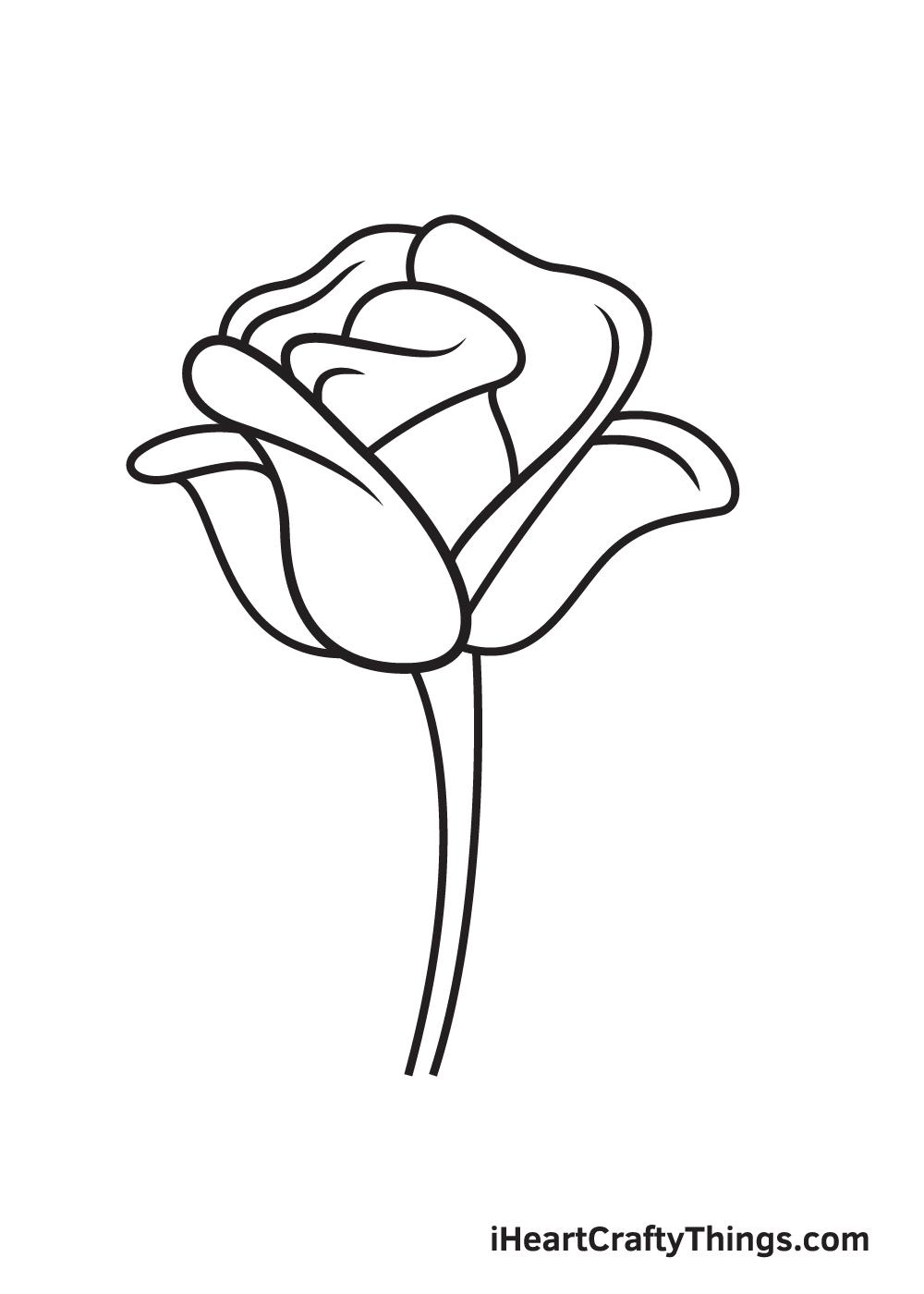 rose drawing step 8