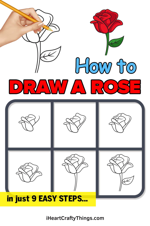 как нарисовать розу за 9 простых шагов