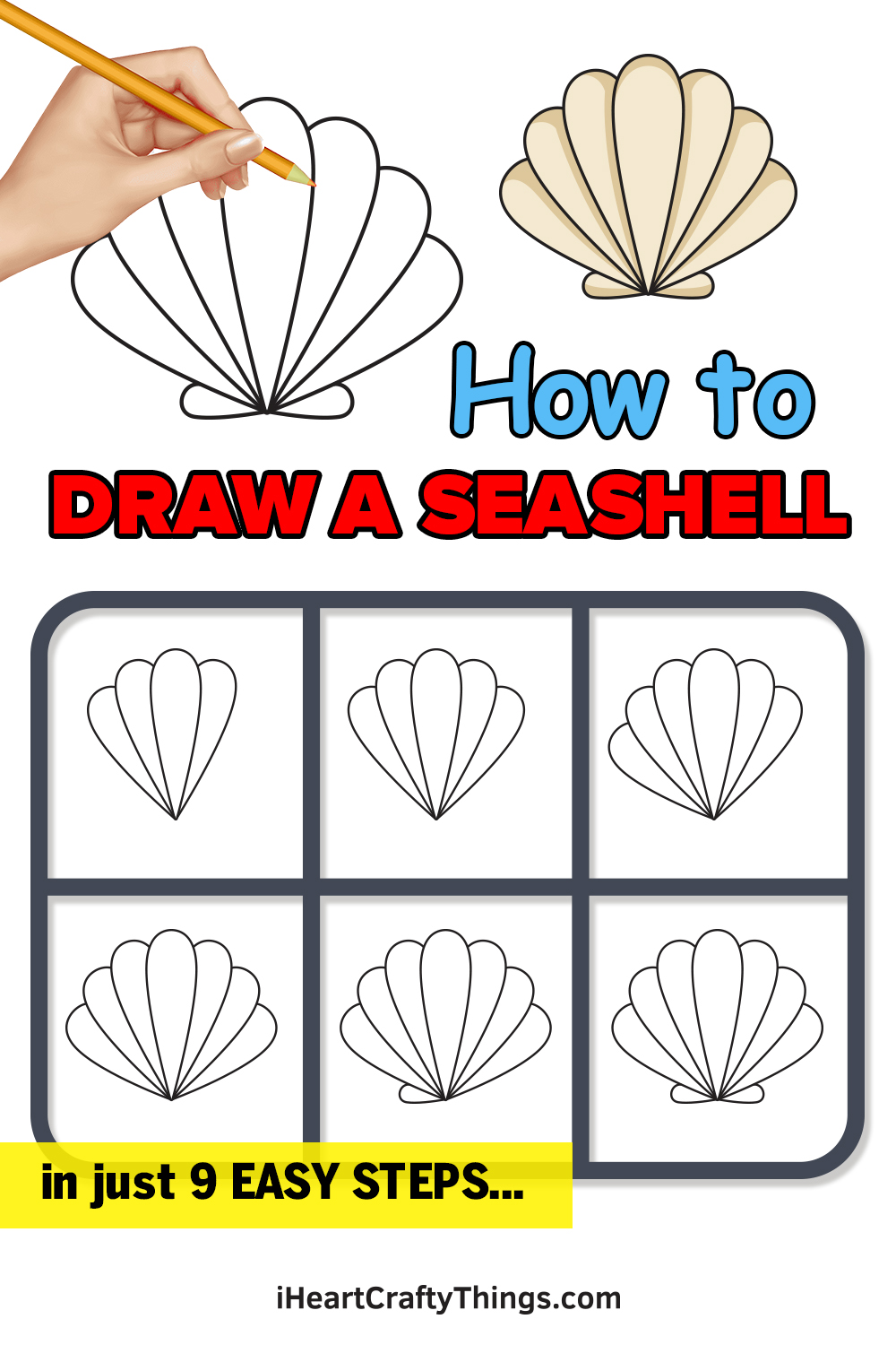 how to draw a seashell in 9 easy steps