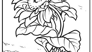 sunflower coloring images free printable