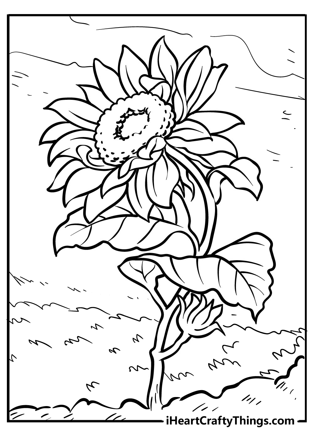 black and white sunflower drawing for kids to color