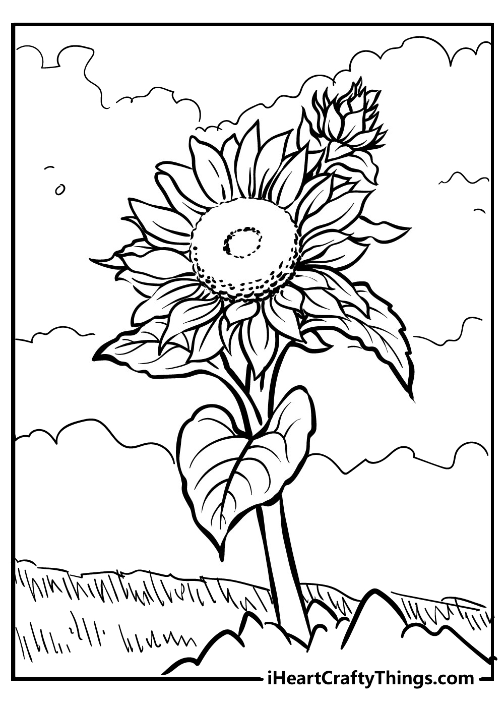 black and white sunflower coloring pages free printable