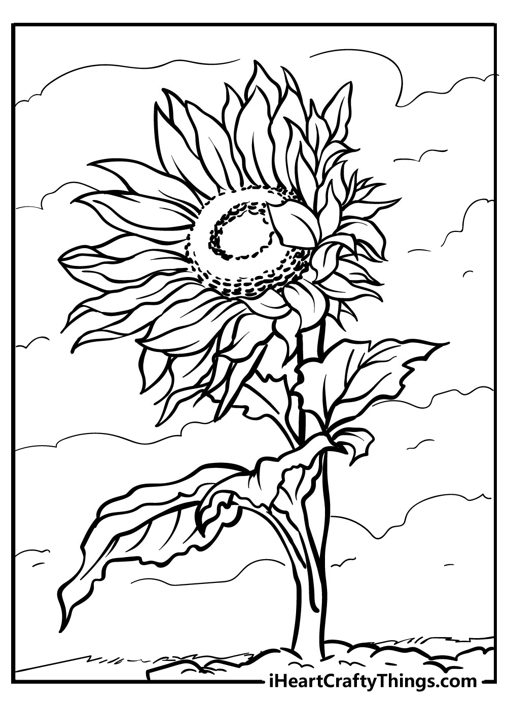 sunflower colouring images free printable