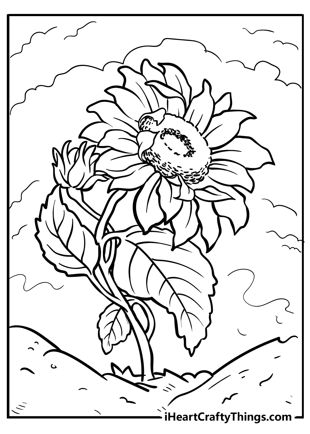 sunflower images for kids to color