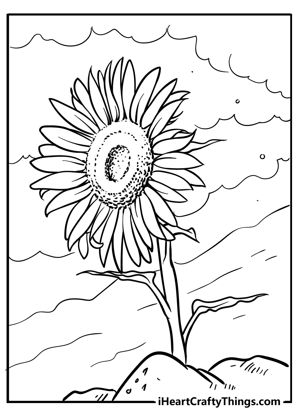 sunflower coloring sheets for download