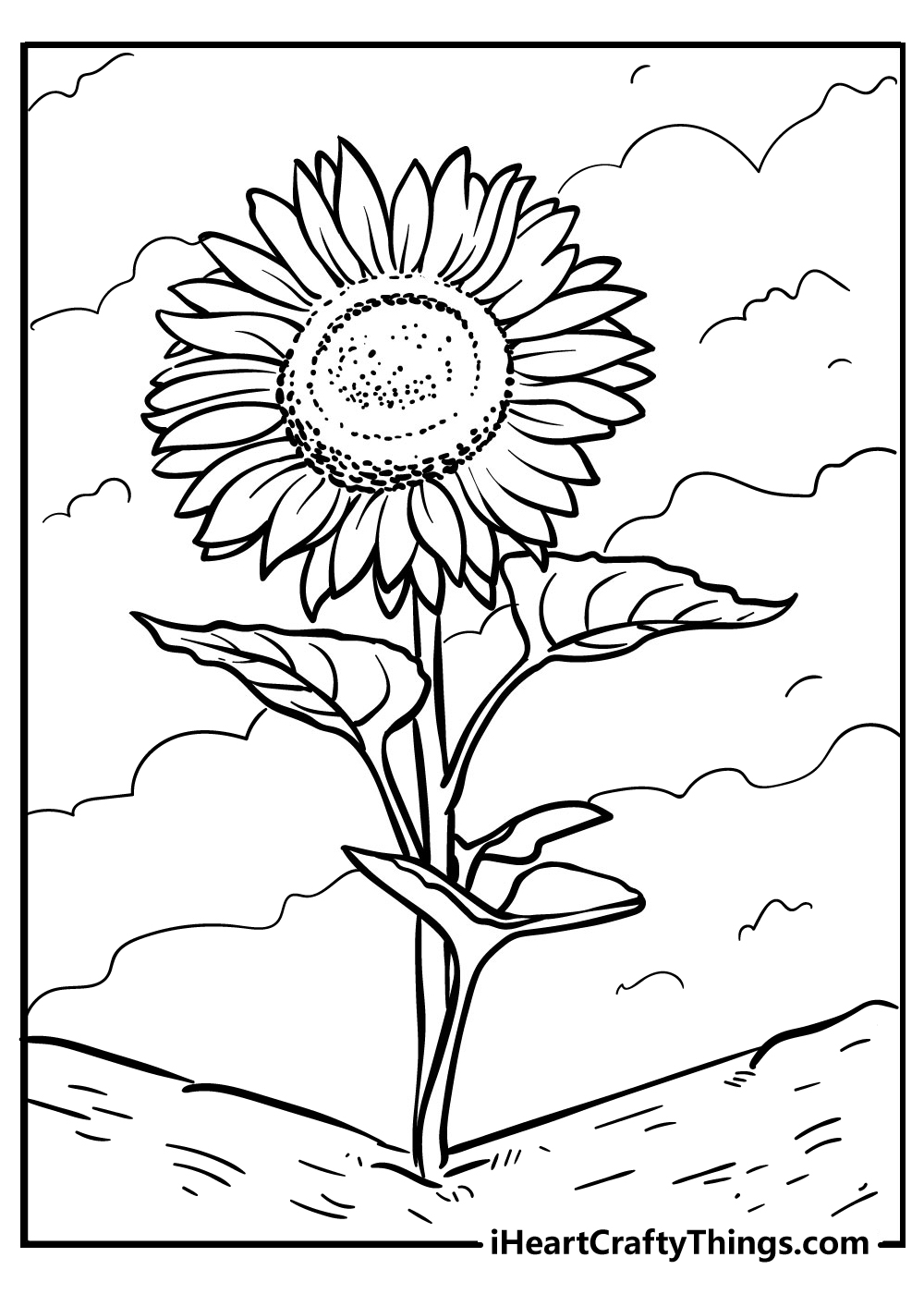 sunflower coloring sheets free printable