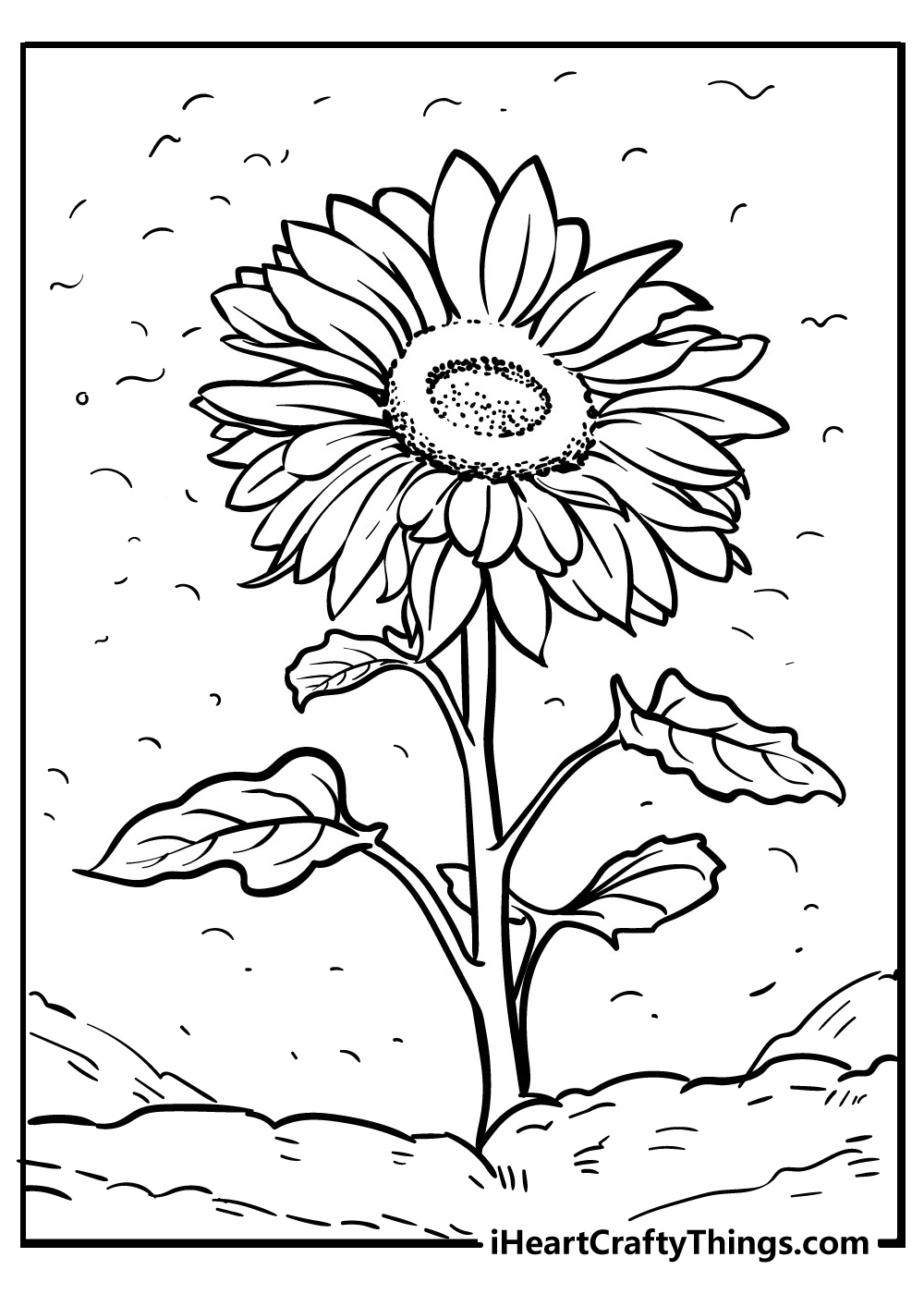 new sunflower coloring pages free download