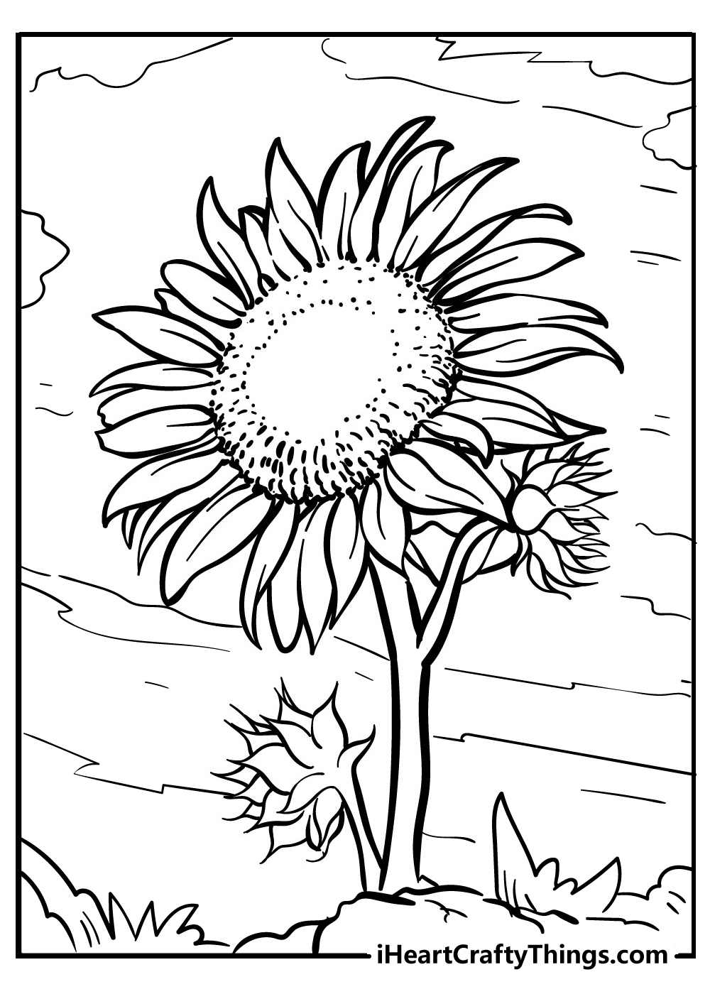 realistic sunflower coloring pages free printable