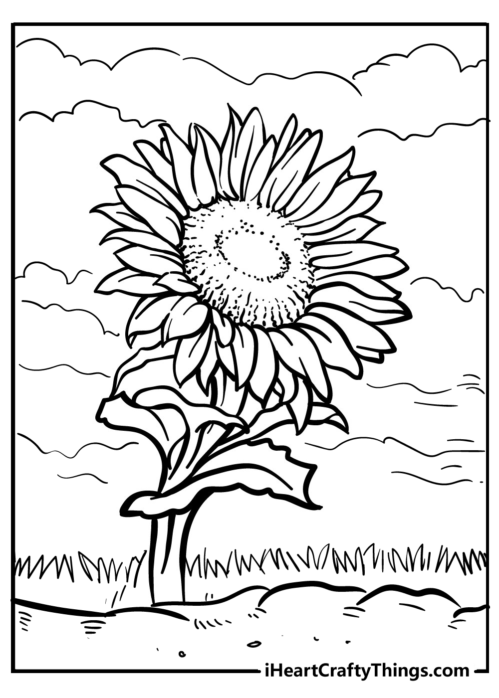 sunflower colouring pages free download
