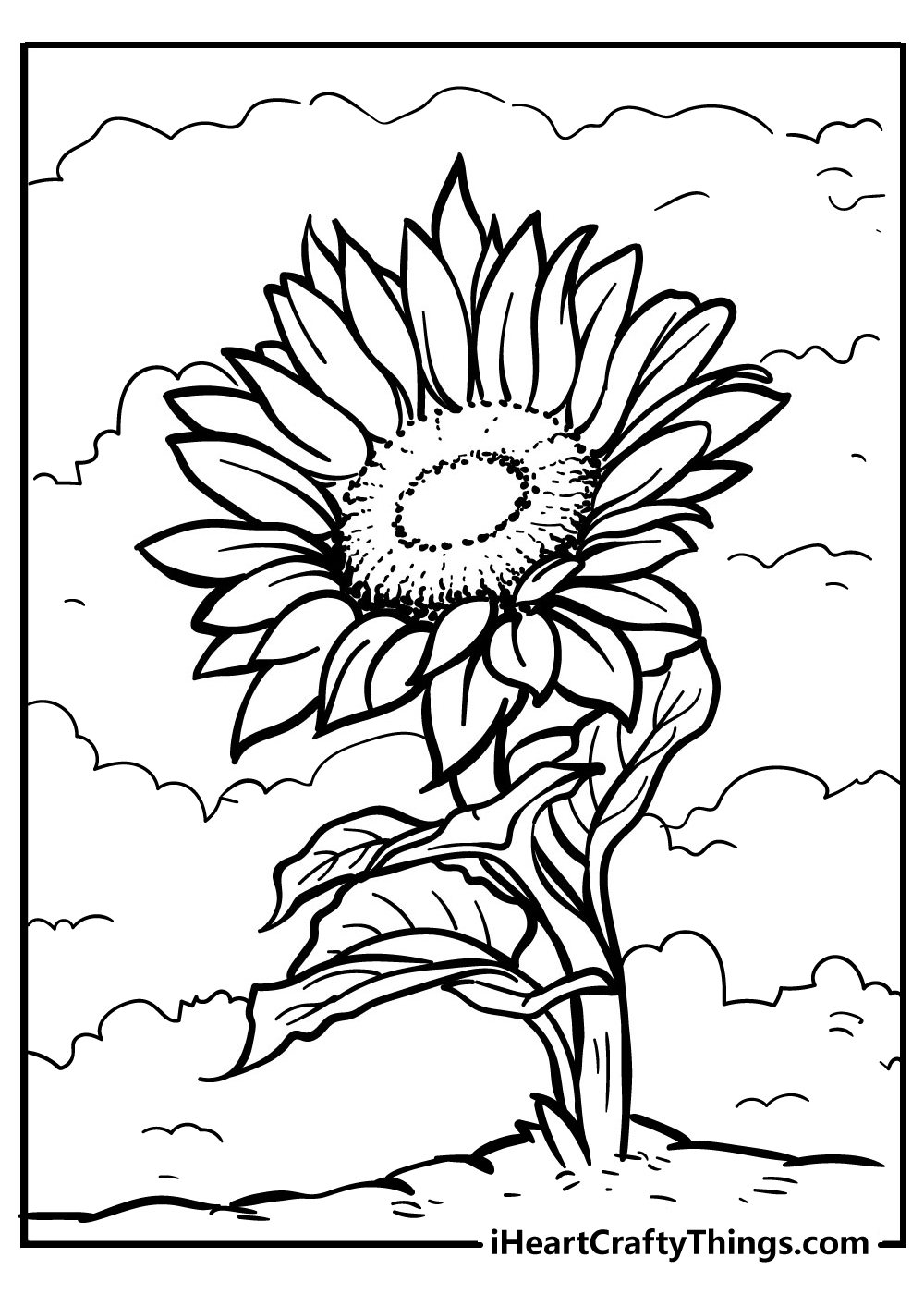 adult coloring new sunflower coloring pages free printable