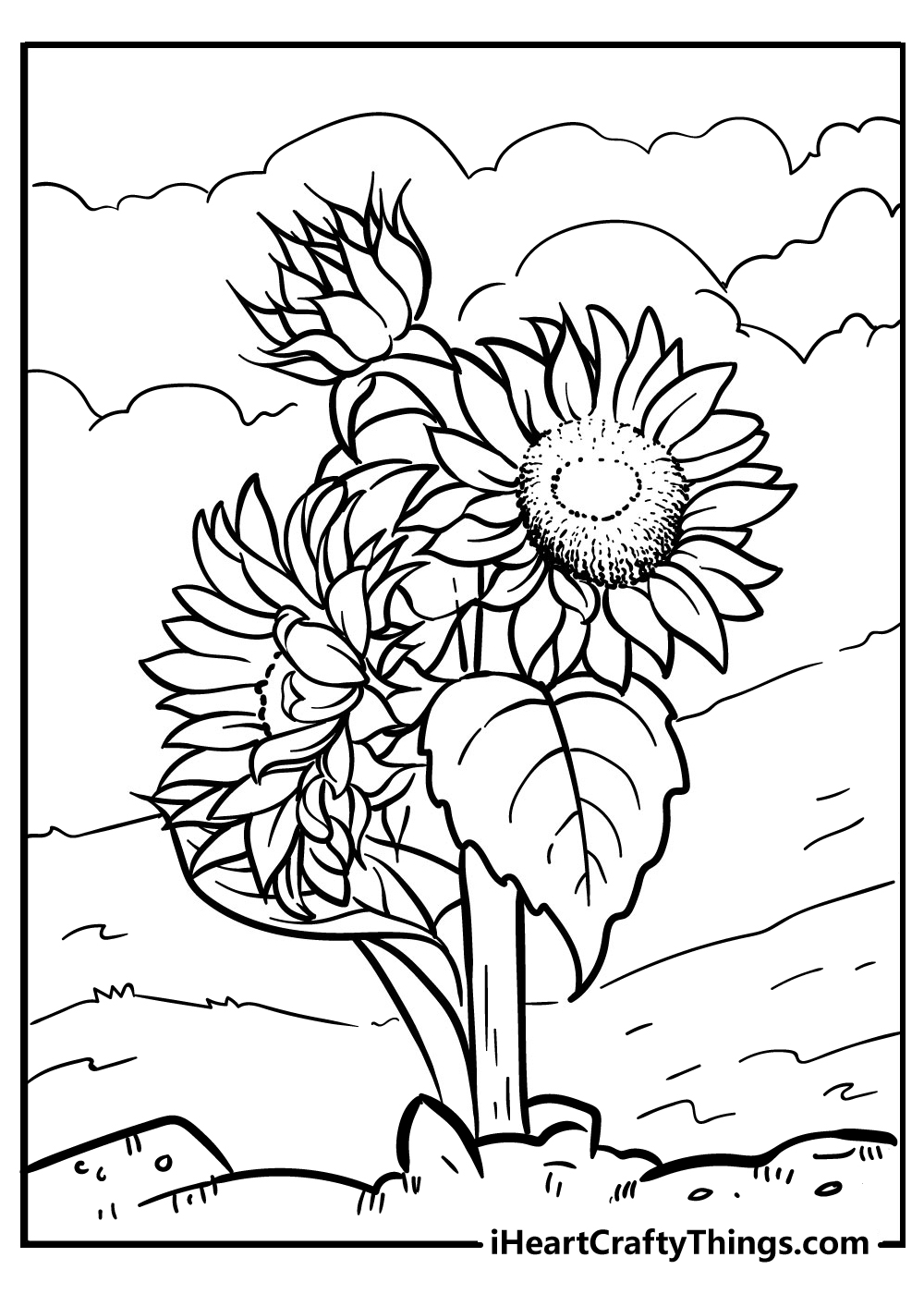 free printable flower coloring sunflower coloring pages