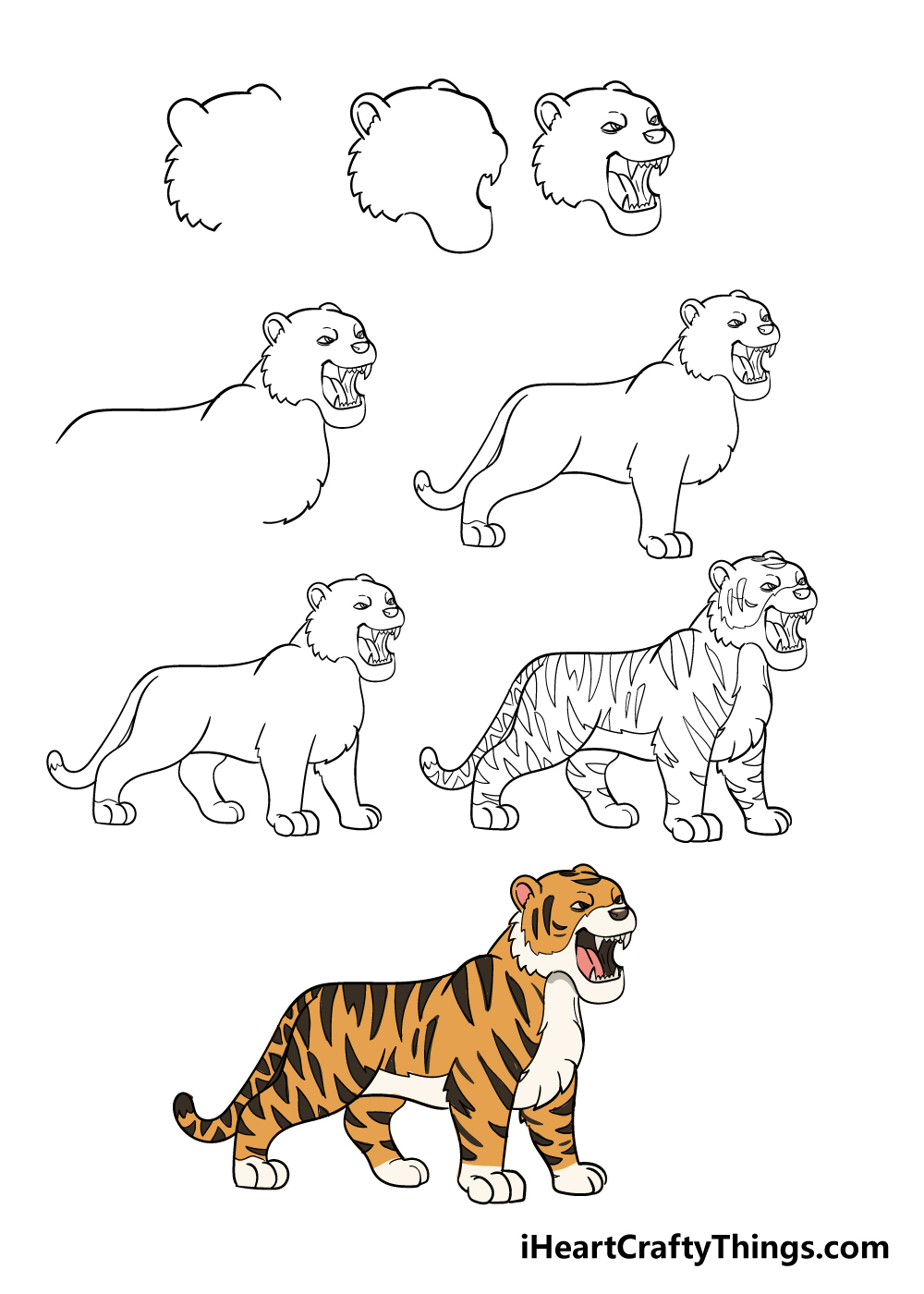 drawing tiger in 8 steps