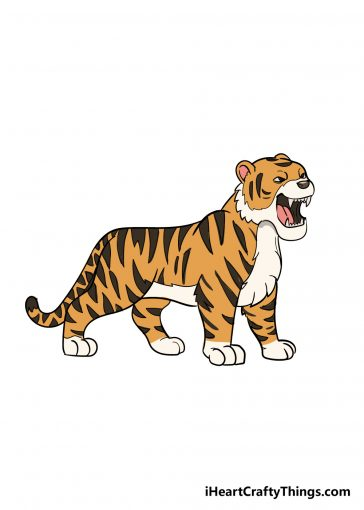 how to draw tiger image