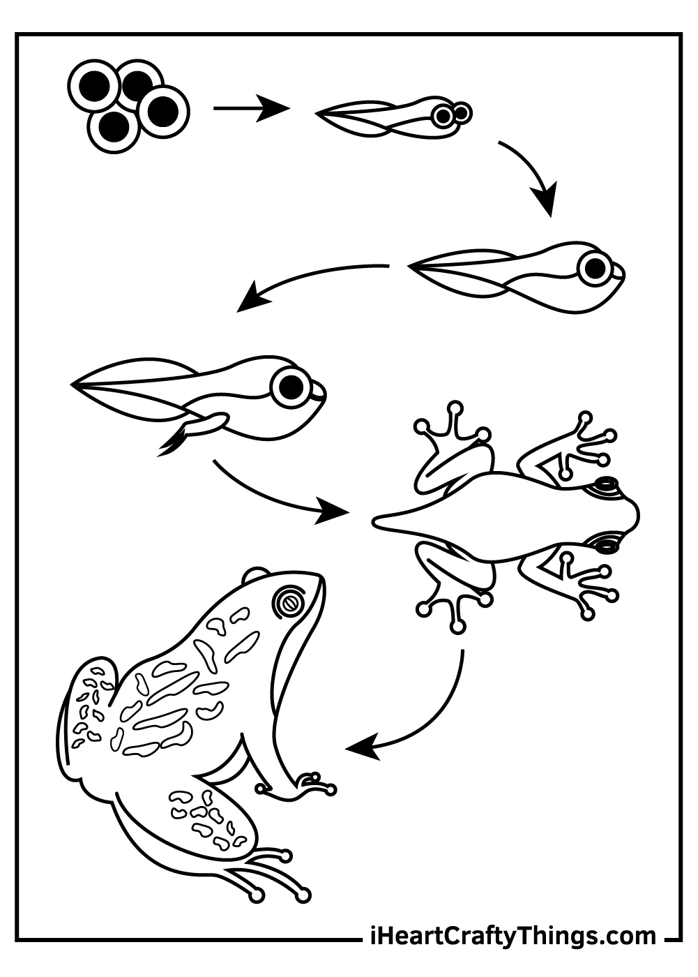 tadpole and frog coloring pages free printable