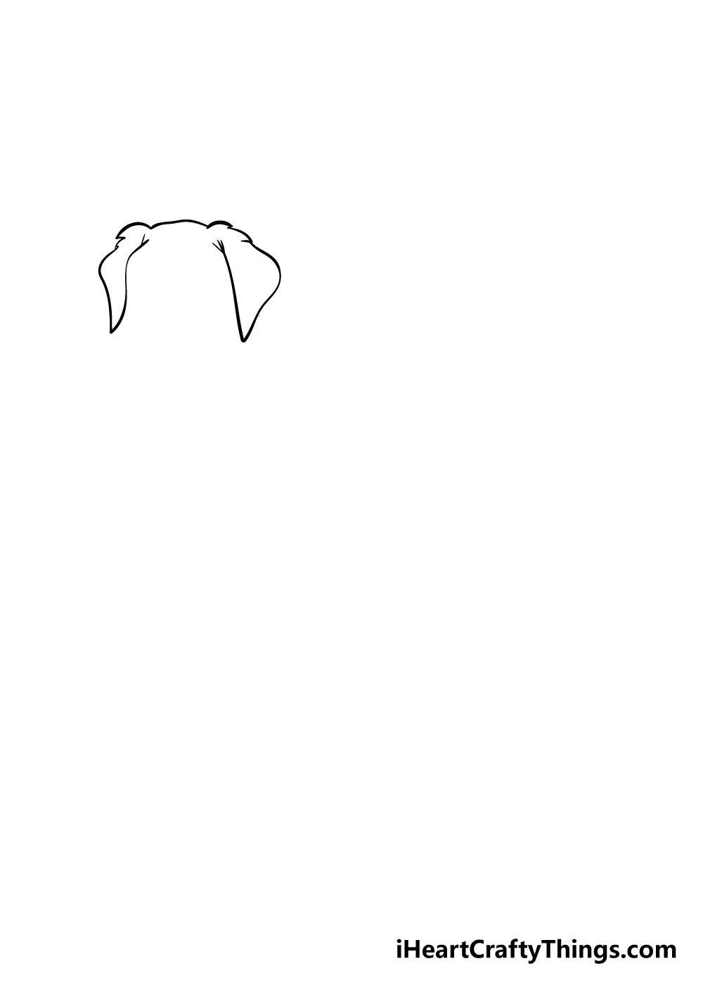 golden retriever drawing step 1