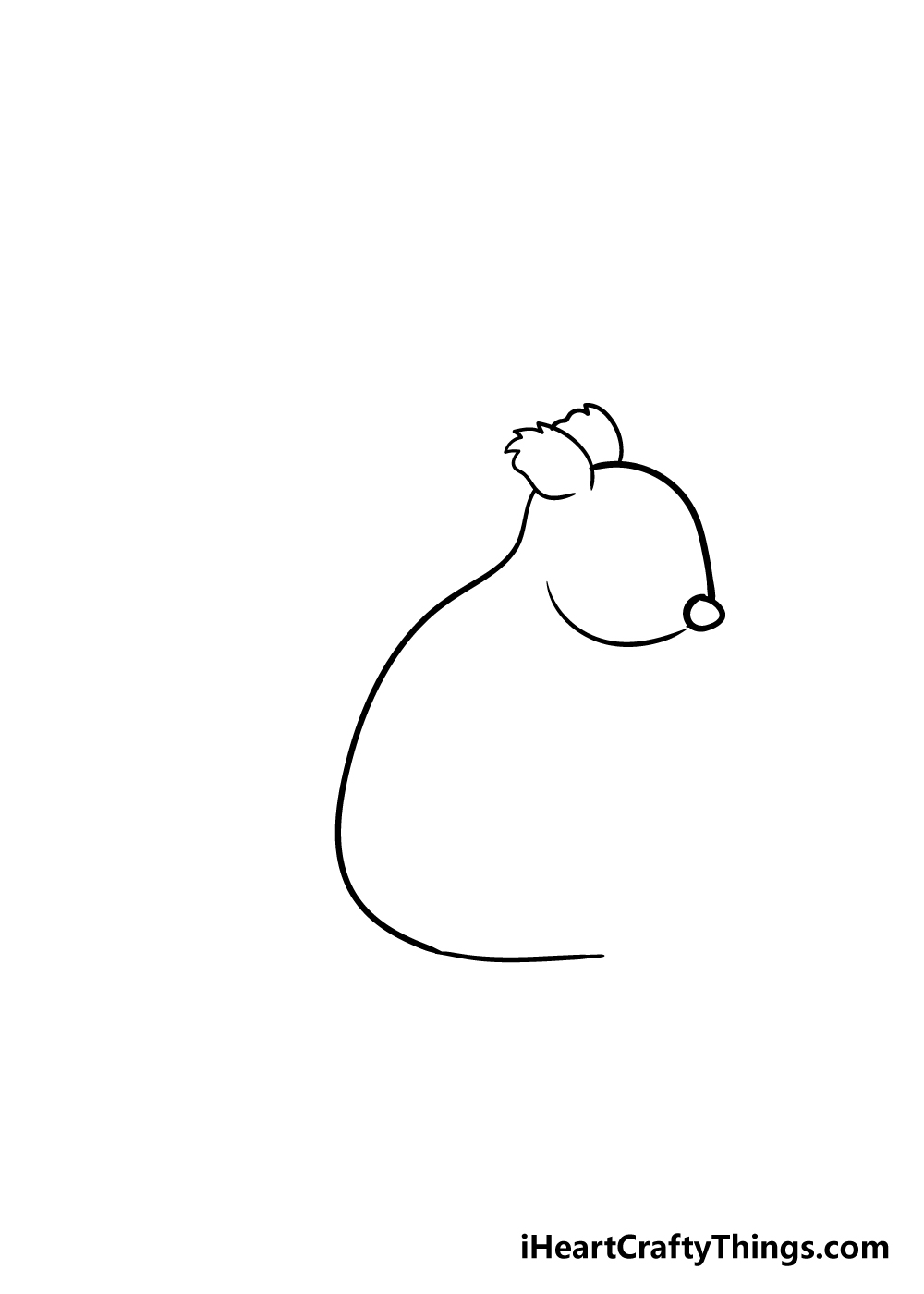 squirrel drawing step 2