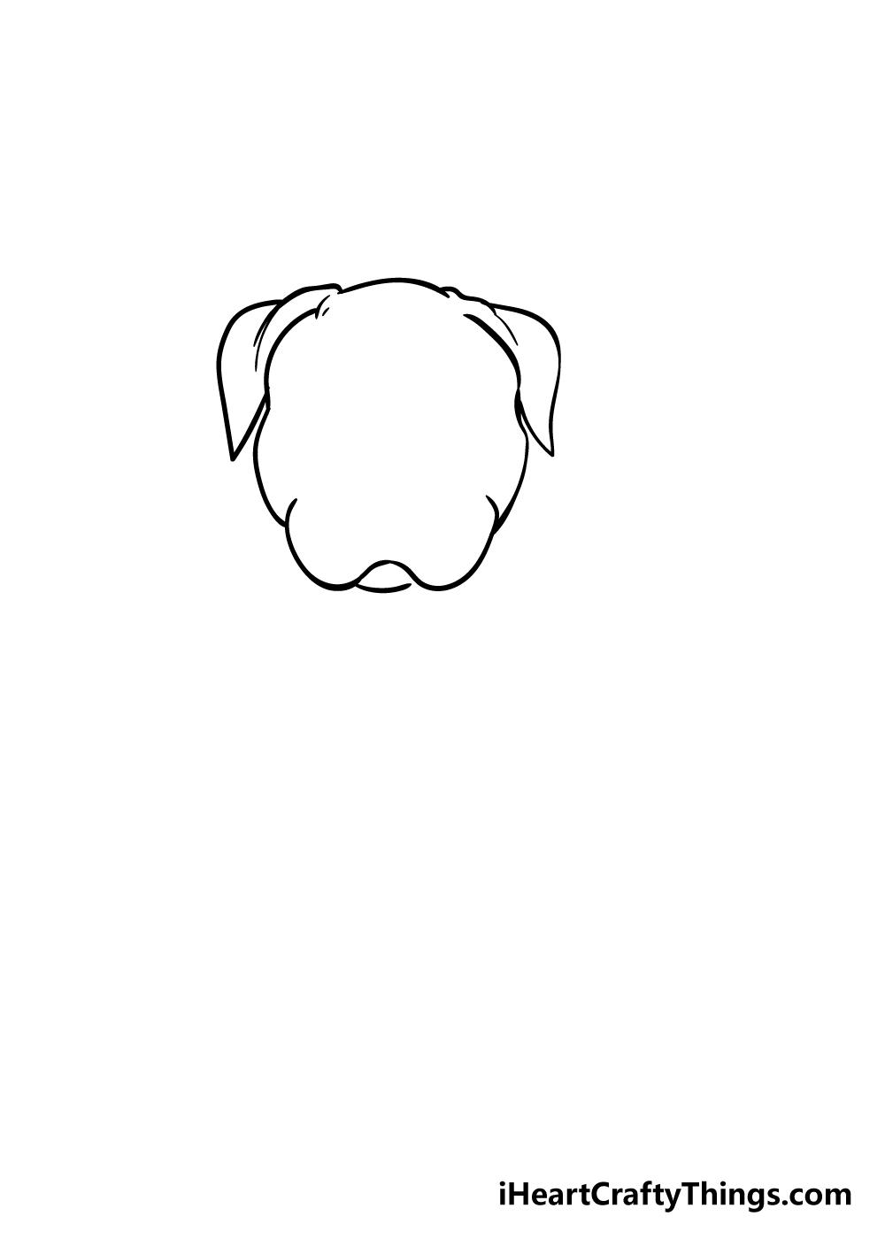 pitbull drawing step 2