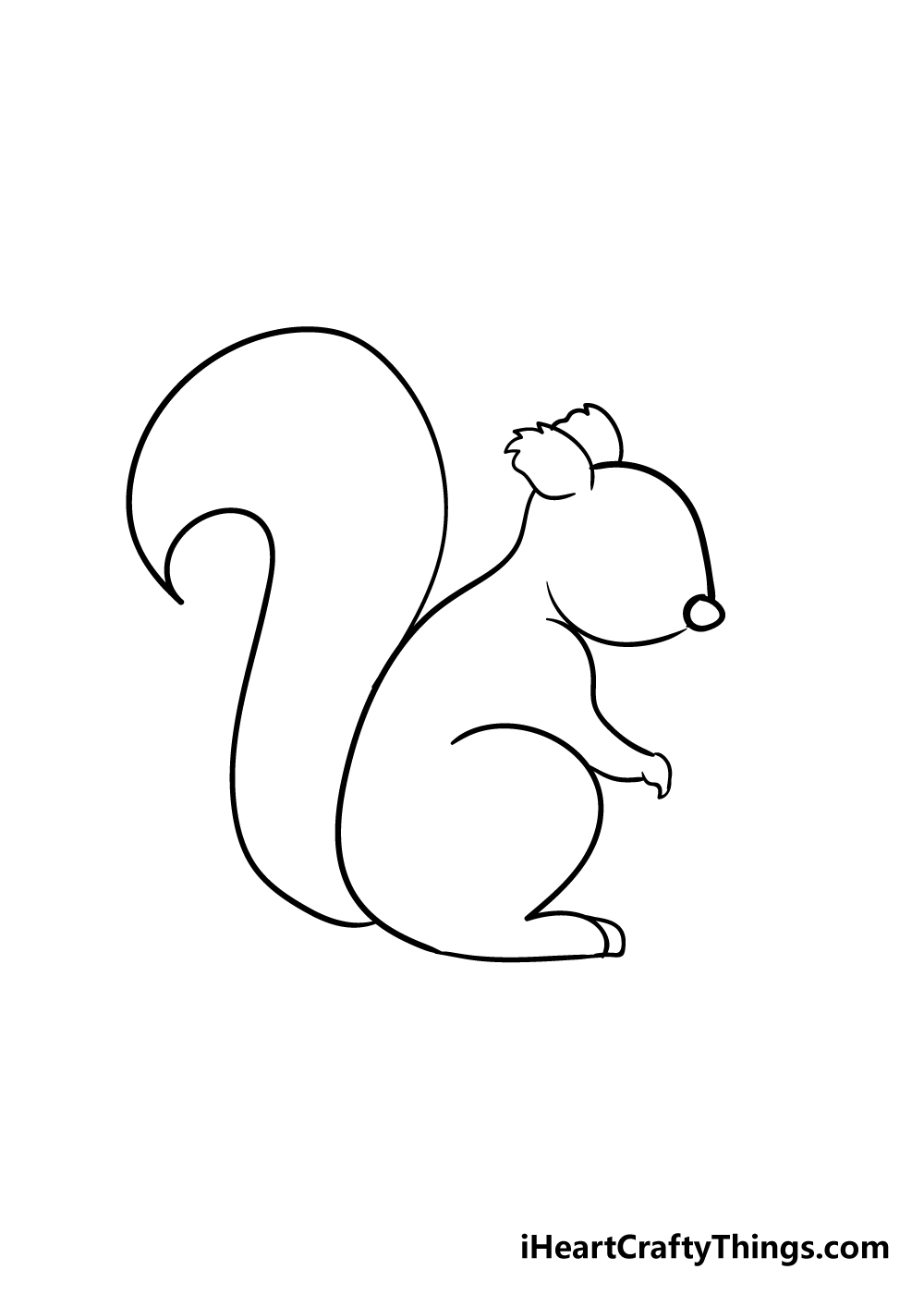 squirrel drawing step 3