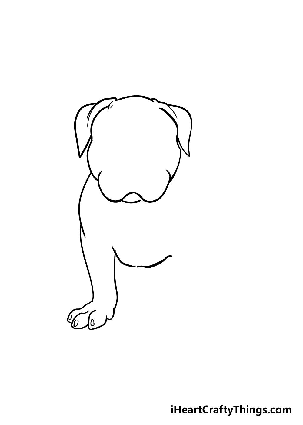 pitbull drawing step 3