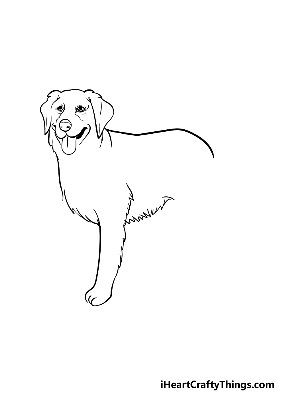 golden retriever drawing step 4