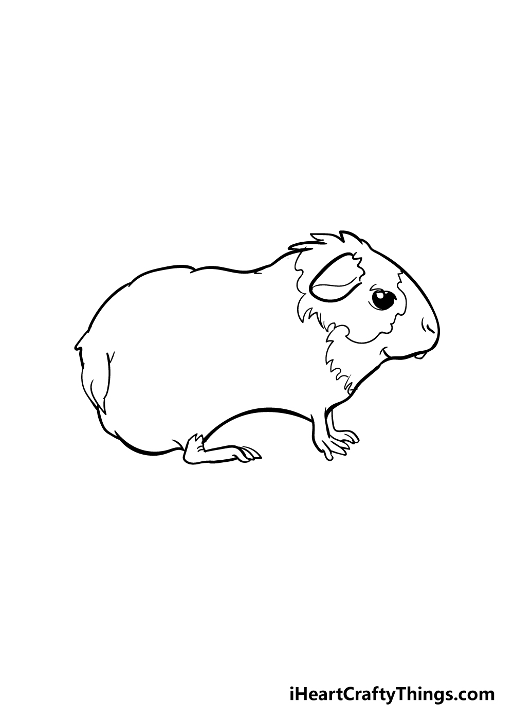 guinea pig drawing step 4