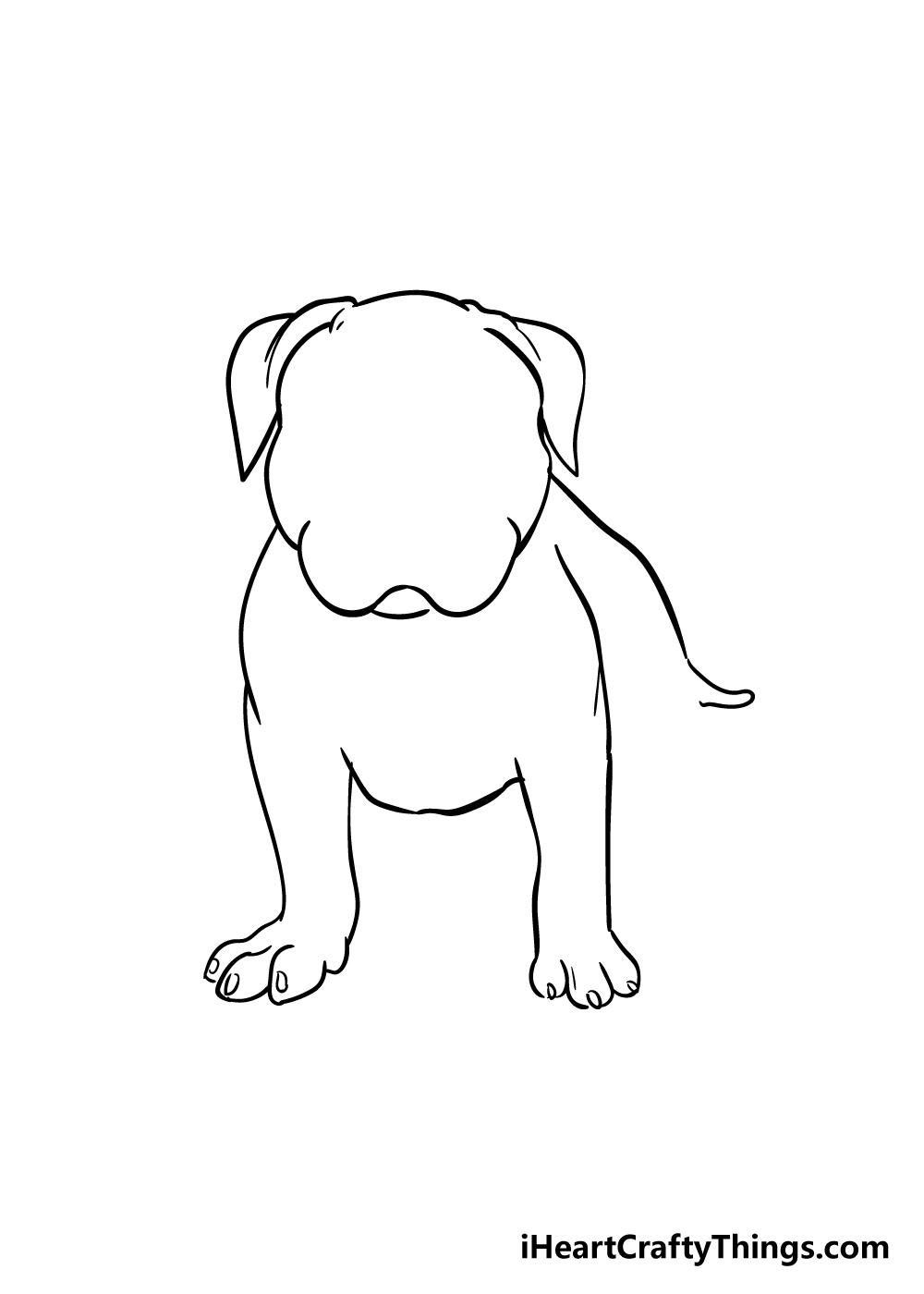 pitbull drawing step 4