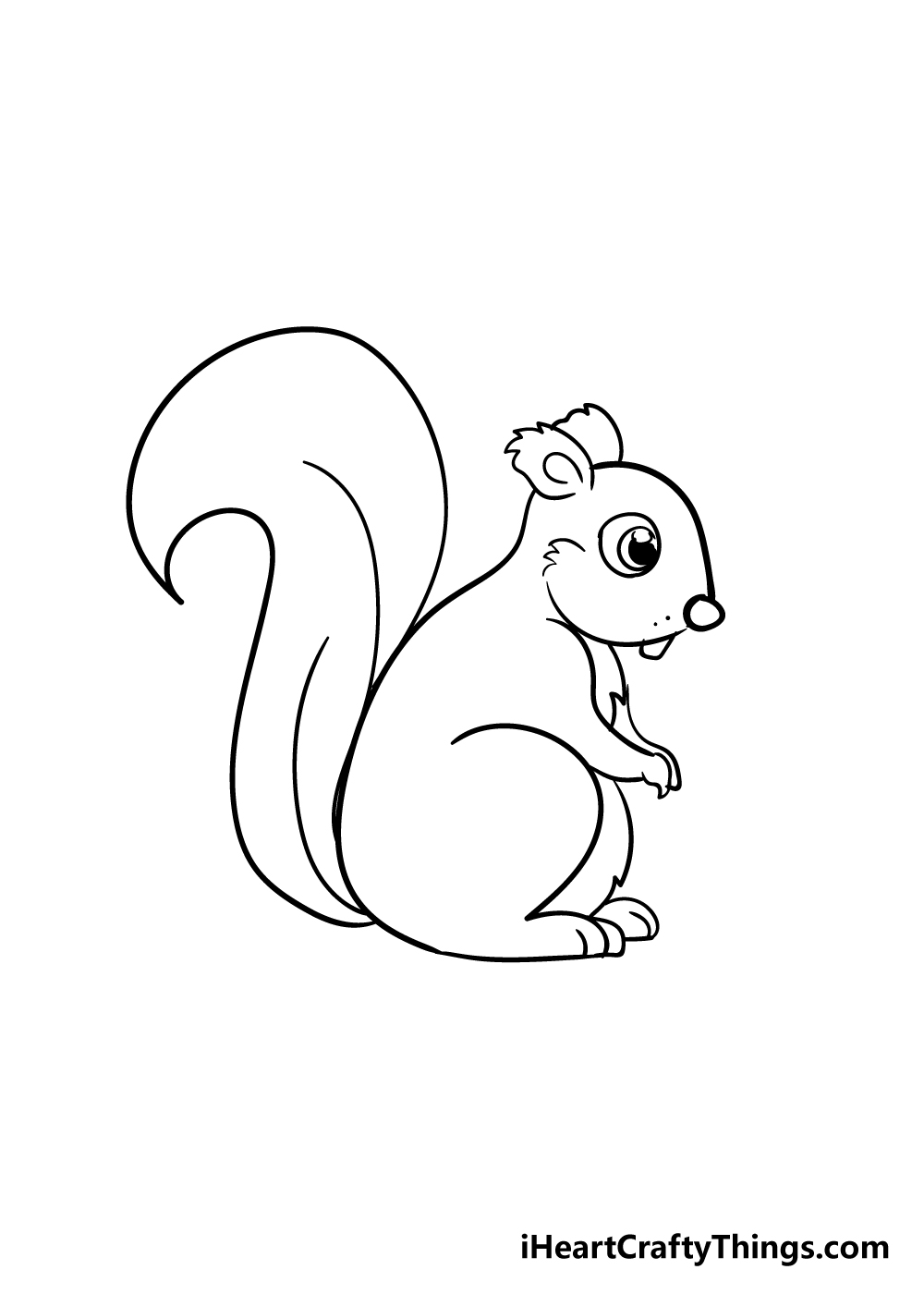 squirrel drawing step 5