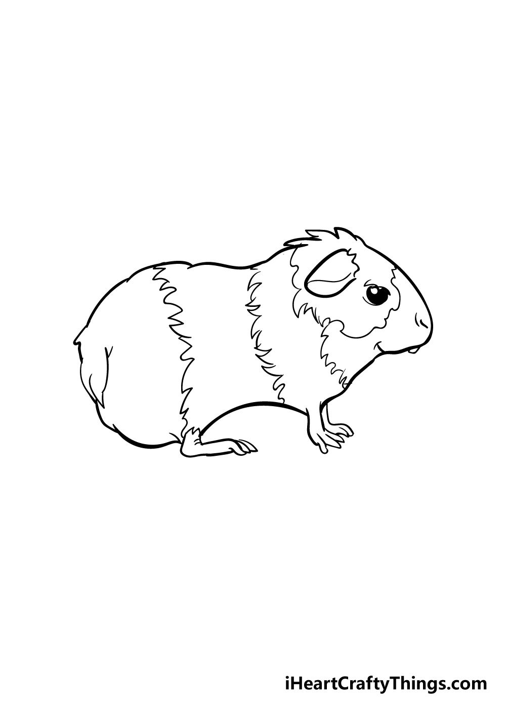 guinea pig drawing step 5