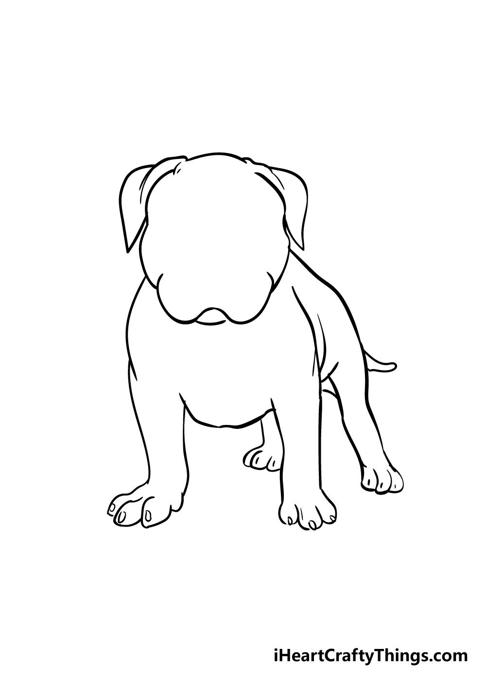 pitbull drawing step 5