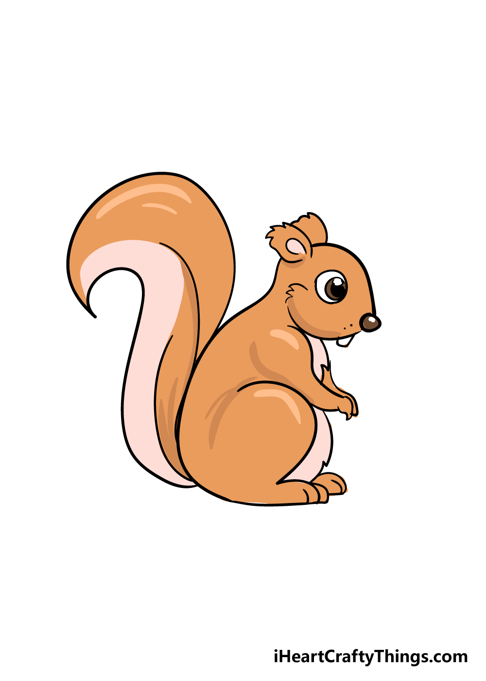 squirrel drawing step 6