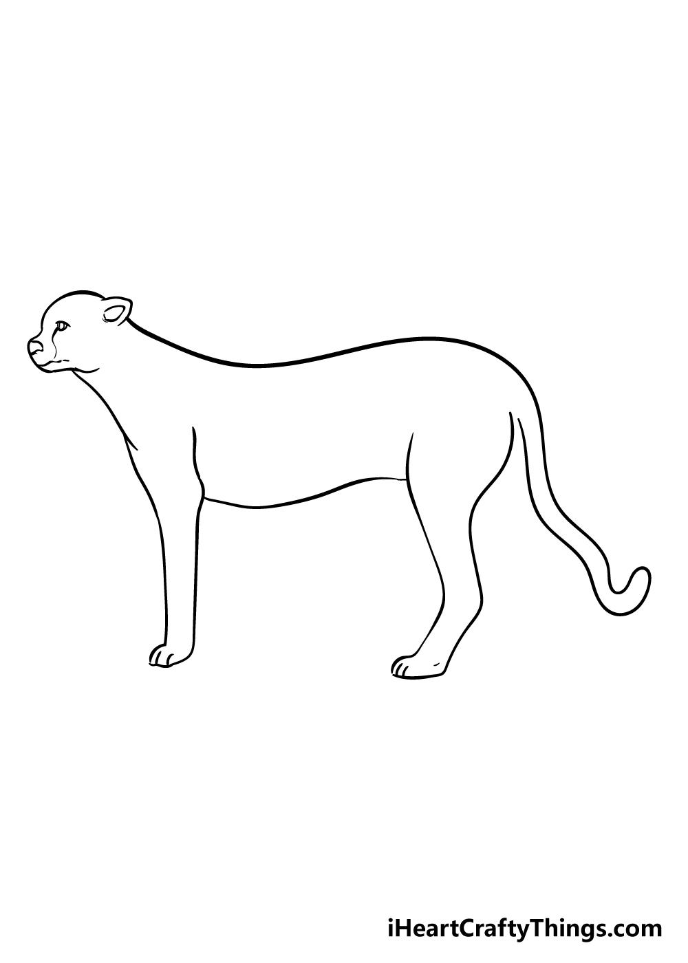 cheetah drawing step 6