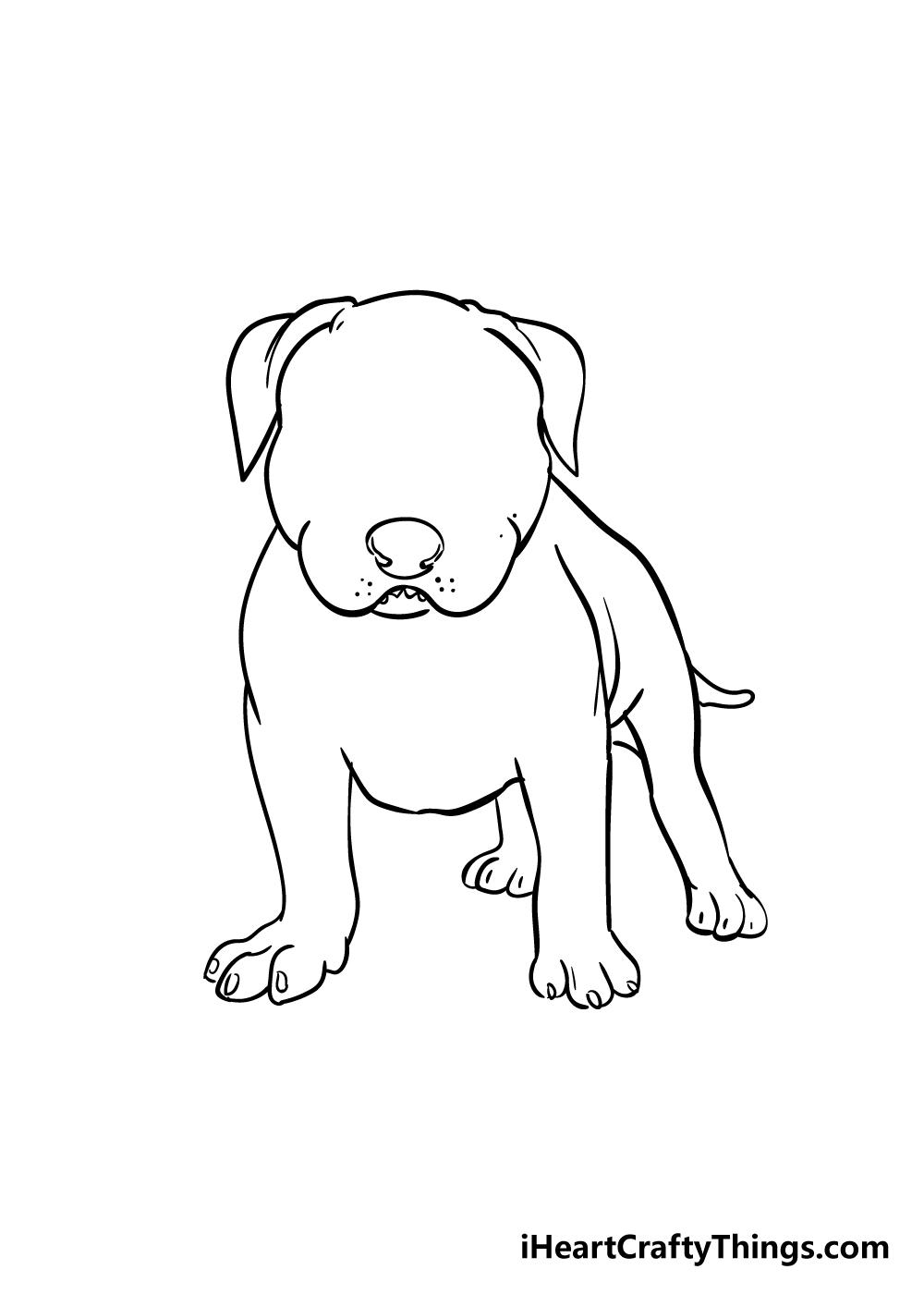 pitbull drawing step 6