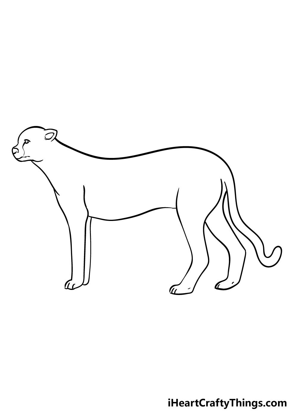 cheetah drawing step 7