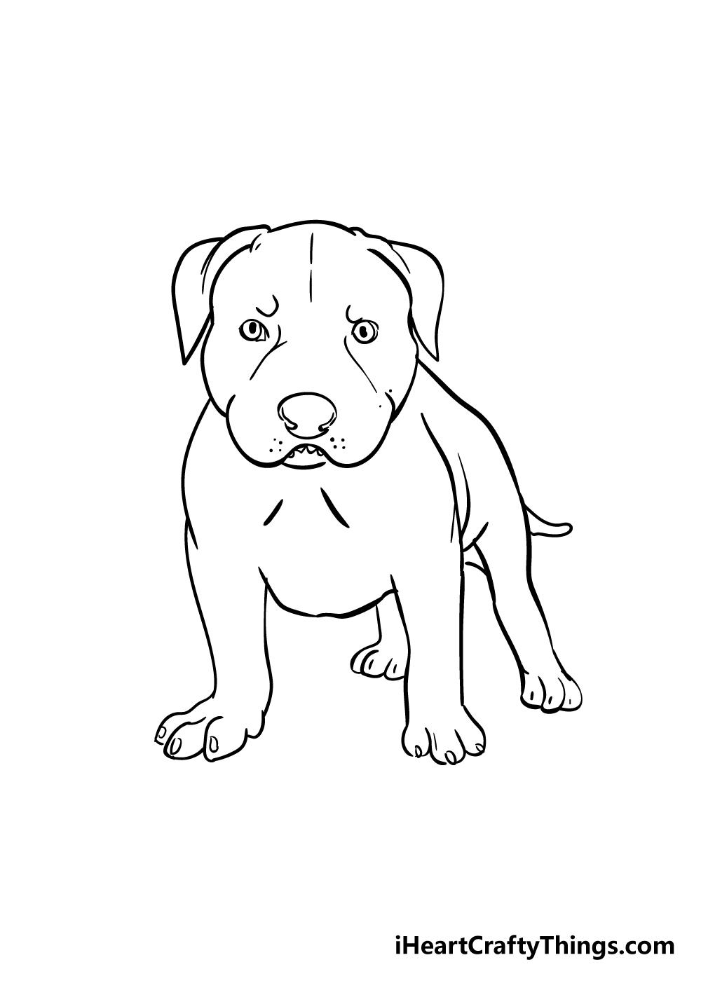 pitbull drawing step 7