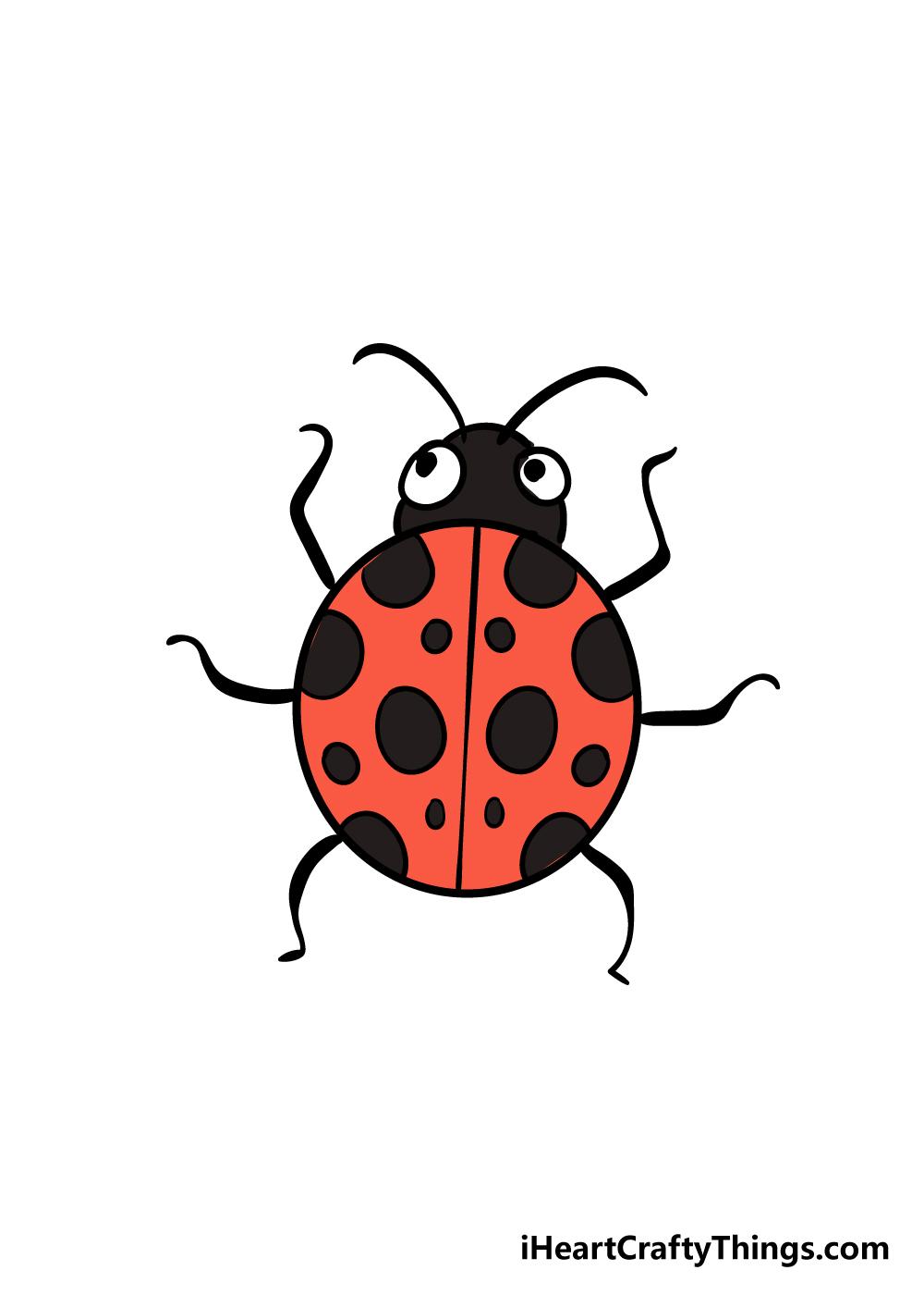ladybug drawing step 8