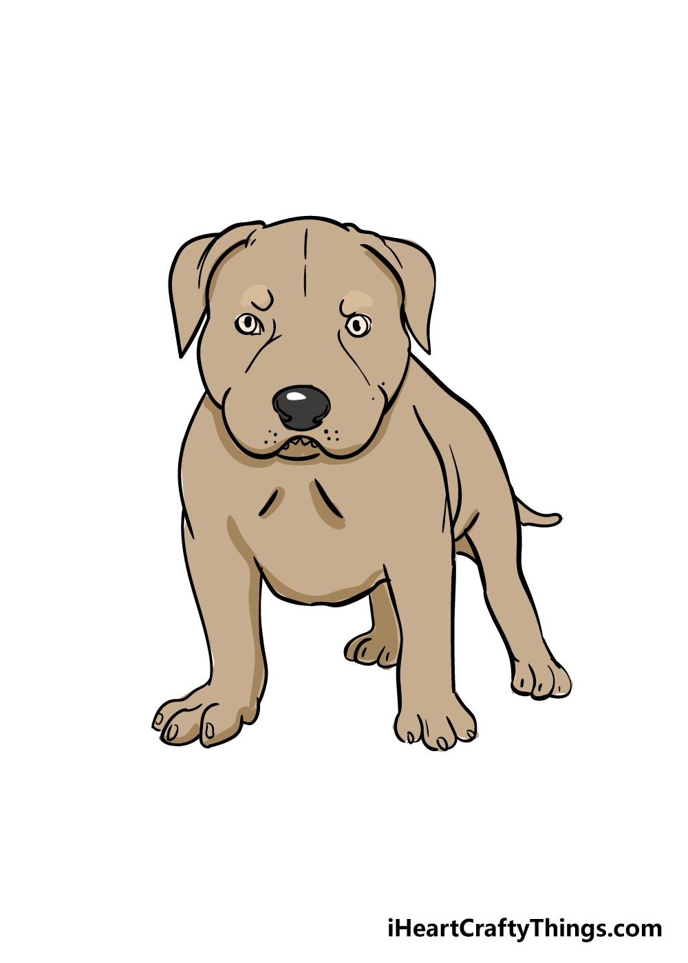 pitbull drawing step 8