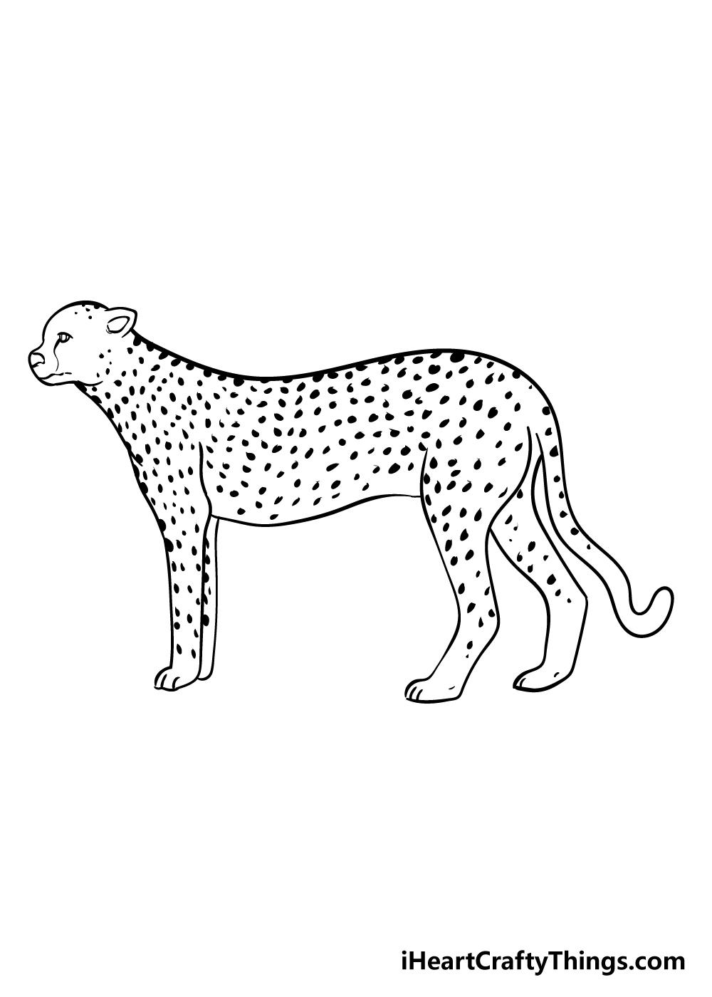 cheetah drawing step 8