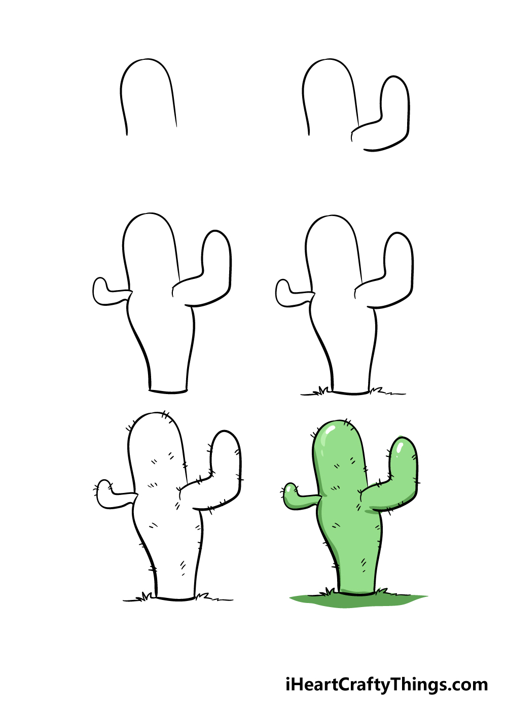 how to draw cactus in 6 easy steps