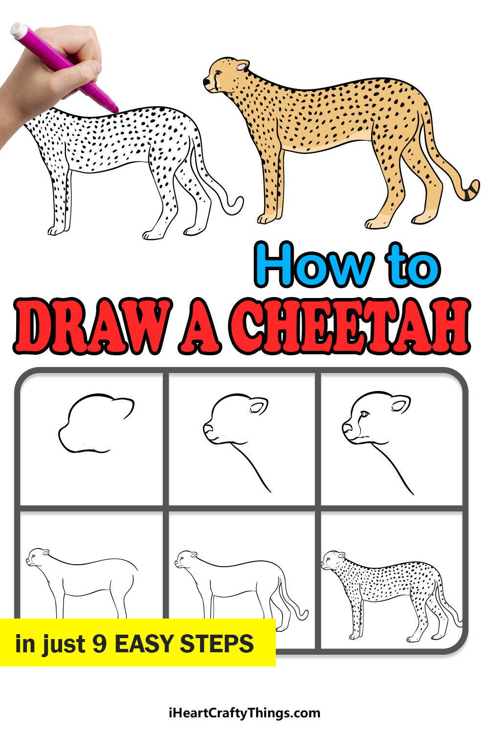 how to draw a cheetah in 9 easy steps