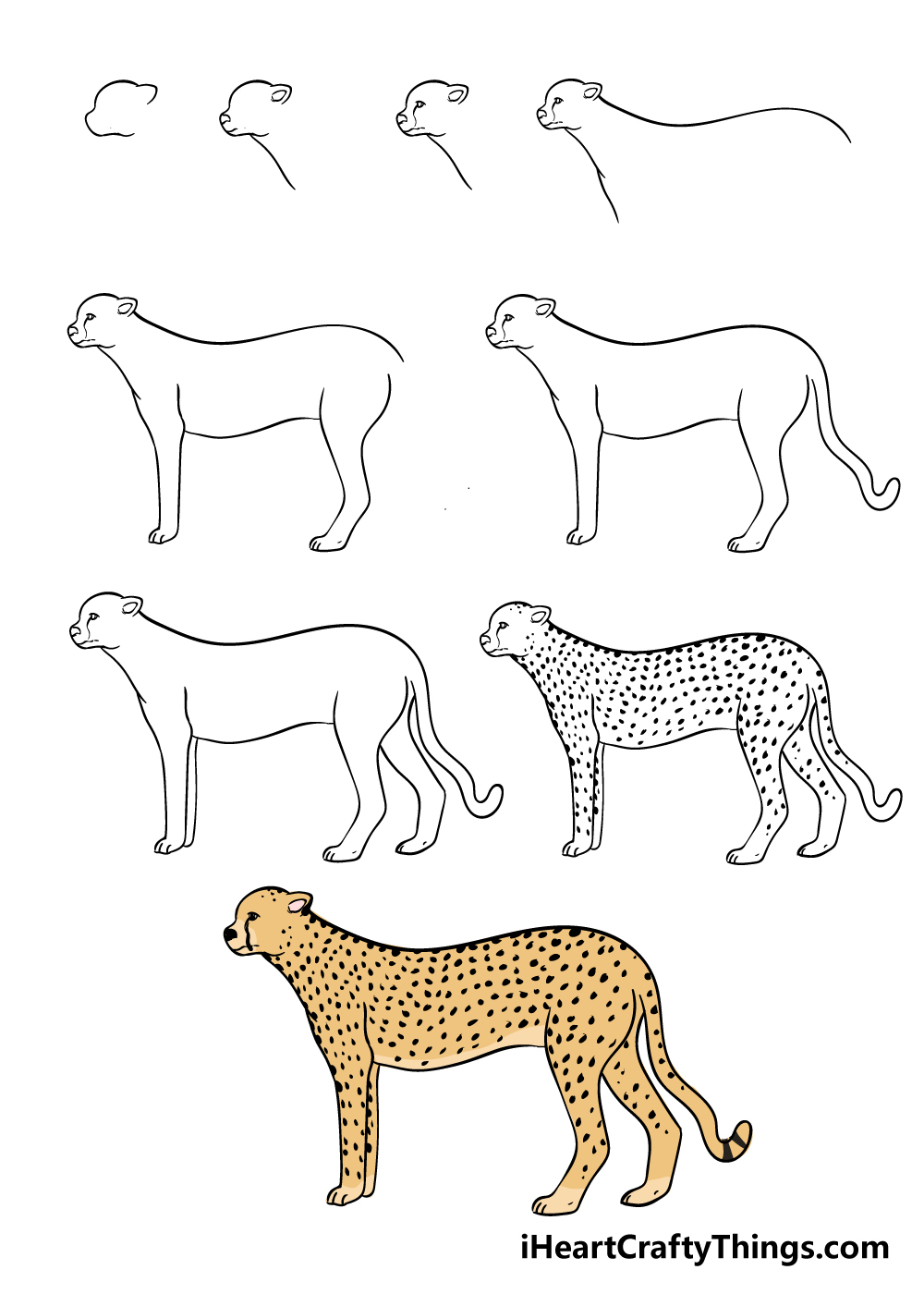 how to draw a cheetah in 9 steps