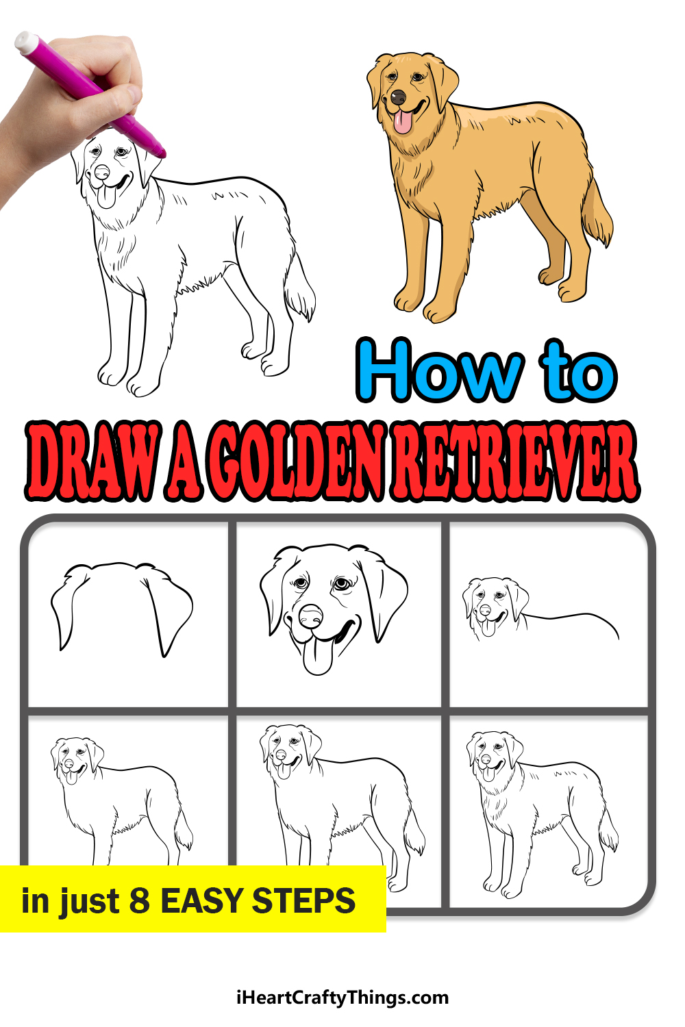 how to draw a golden retriever in 8 easy steps