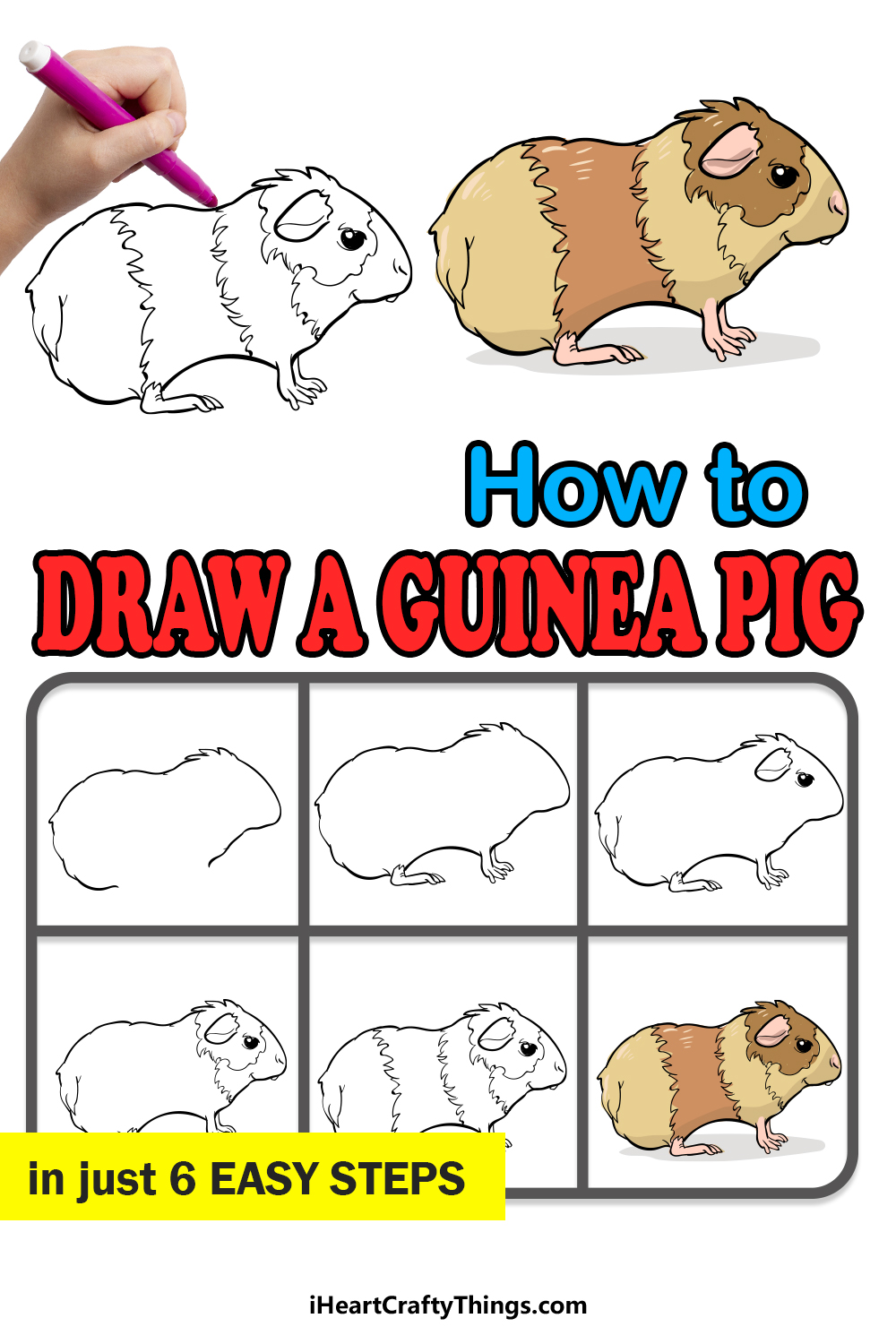 how to draw a guinea pig in 6 easy steps