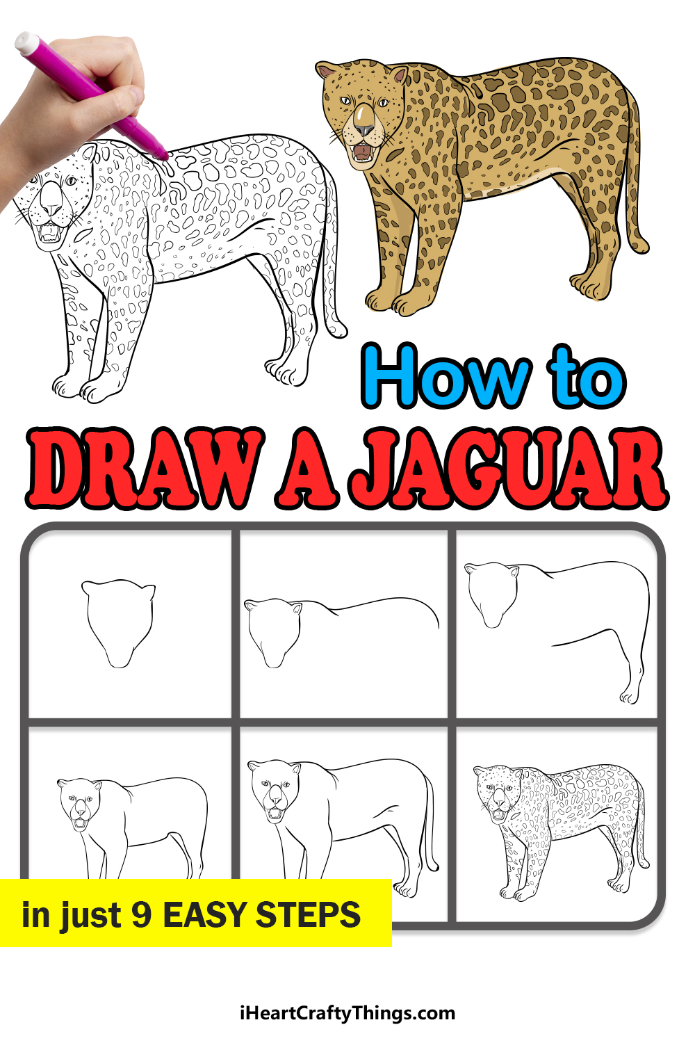 how to draw a jaguar in 9 easy steps