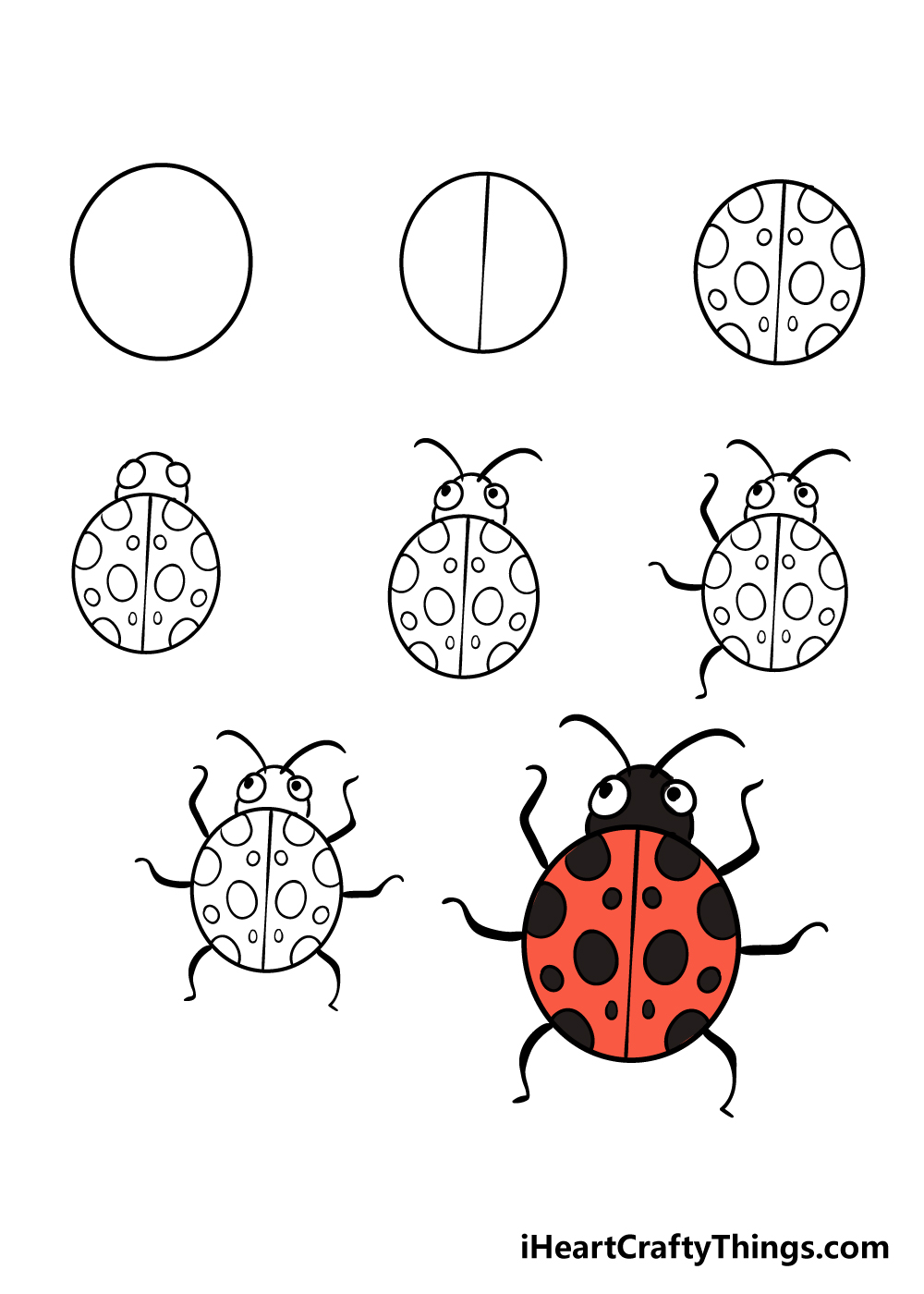 how to draw ladybug in 8 steps